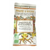 Biopastilles de tisane à sucer Propolis Eucalyptus  biologique - 15g (25 pastilles environ)
